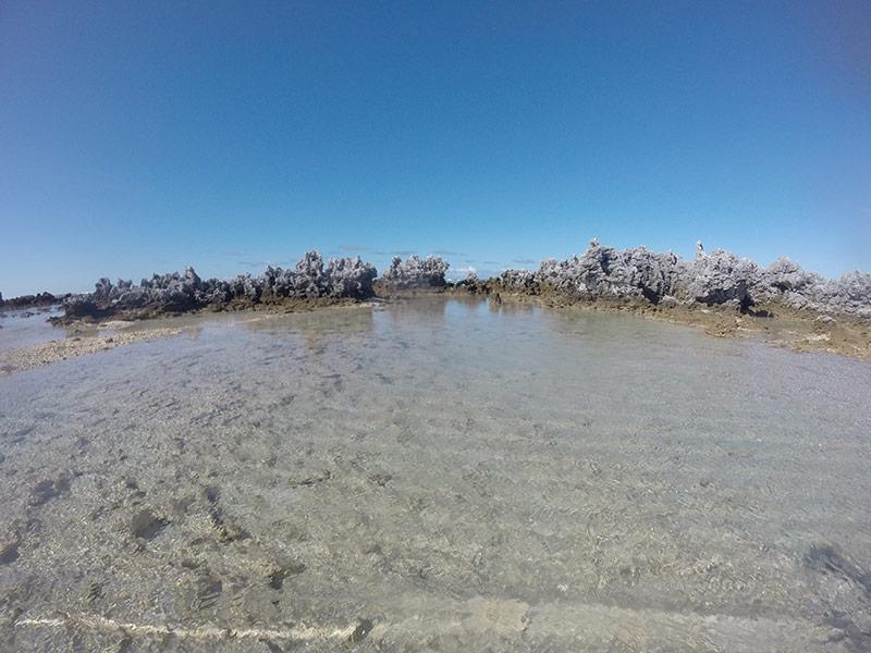 Ile-aux-recif-rangiroa