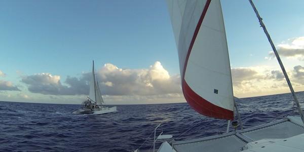 Catamaran Tahiti Voile Plongee Sous Marine