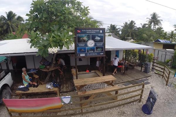 Croisiere Club Rangiroa Catamaran Tahiti Dauphin
