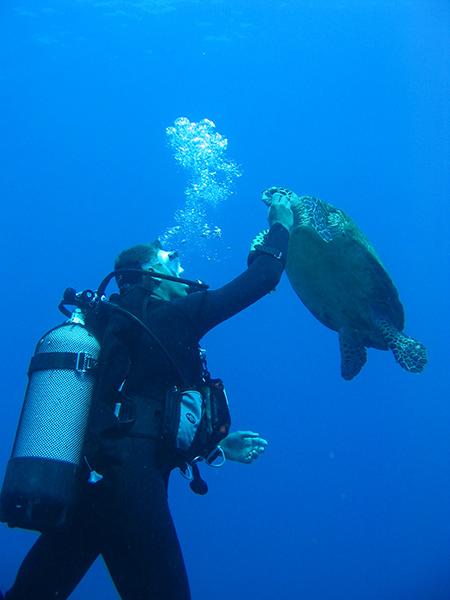 Croisiere-tahiti-plongee-sous-marine-2