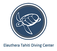 Eleuthera-Tahiti-Diving-Center-200