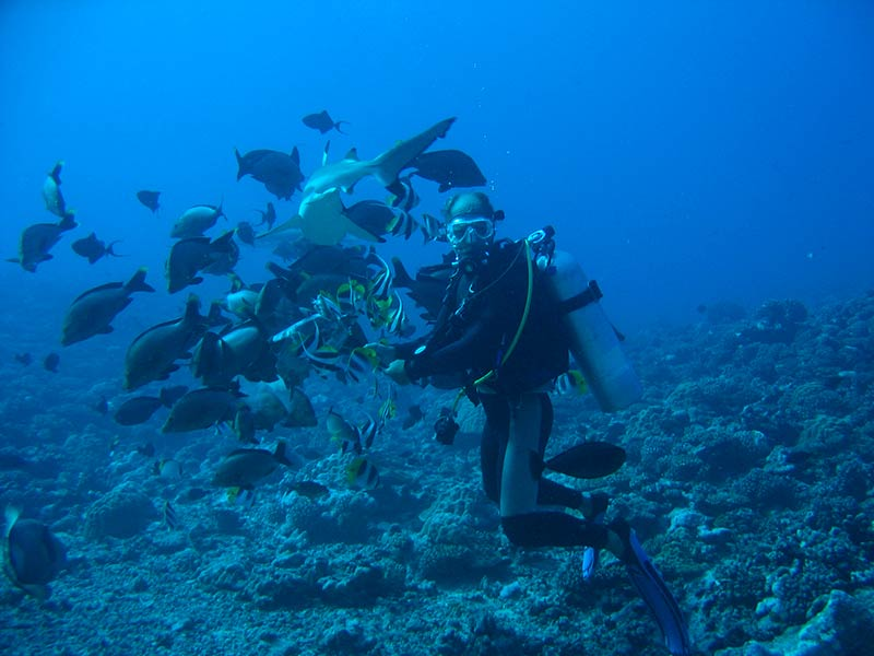 Plongee-tahiti-3
